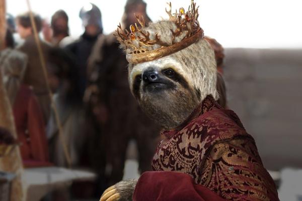 joffrey-sloth